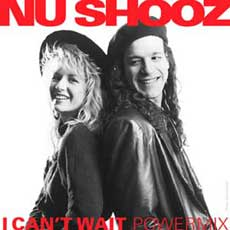 Nu Shooz Band